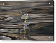 Tiger Water Bubble Acrylic Print by Cathie Douglas