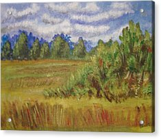 Tillar Field Acrylic Print by Belinda Lawson
