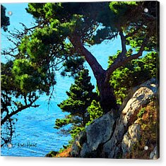 Timber Cove In Sonoma Coast Acrylic Print by Russ Harris