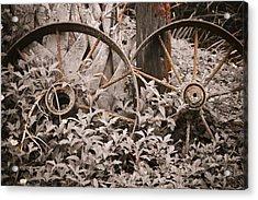 Time Forgotten Acrylic Print by Carolyn Marshall