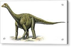 Titanosaurus Indicus, A Prehistoric Era Acrylic Print by Sergey Krasovskiy