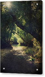 To My Happy Place Acrylic Print by Laurie Search