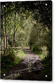 To The End Of September Acrylic Print by Odd Jeppesen