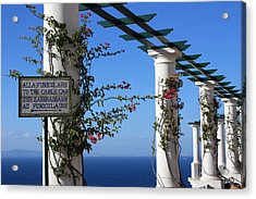 To The Funicolare Acrylic Print by Andrea Lucas