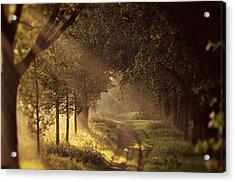 To The Shire Acrylic Print by Studio Yuki