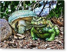 Toadstool Umbrella Acrylic Print