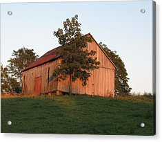 Tobacco Barn II In Color Acrylic Print