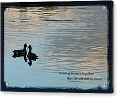 Together Acrylic Print by Steven Sparks