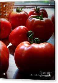 Acrylic Print featuring the painting Tomato Love by Susan Fisher