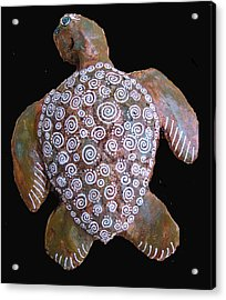 Toni The Turtle Acrylic Print by Dan Townsend