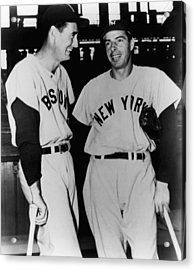 Top Sluggers. Ted Williams Acrylic Print by Everett