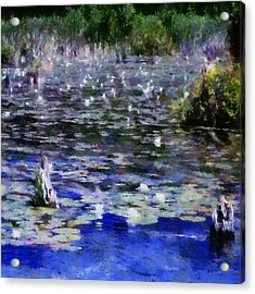 Torch River Water Lilies Ll Acrylic Print by Michelle Calkins