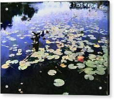 Torch River Water Lilies 3.0 Acrylic Print by Michelle Calkins