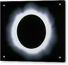 Total Solar Eclipse, 1999 Acrylic Print by Dr Fred Espenak