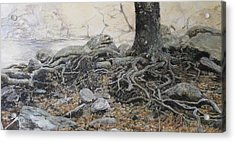 Tough Tree Acrylic Print by Yuri Ozaki