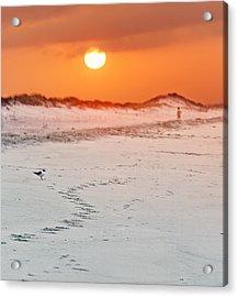 Toward The Sunrise Acrylic Print by Vicki Jauron