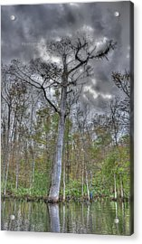 Towering In The Water Acrylic Print by Dennis Clark