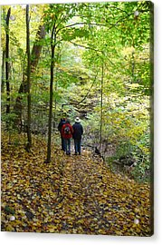 Trail From Strawberry Lane Acrylic Print