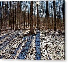 Trail In Winter Acrylic Print by Susan Leggett