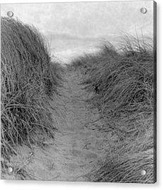 Trail Through The Sand Dunes Acrylic Print by Daniel J. Grenier