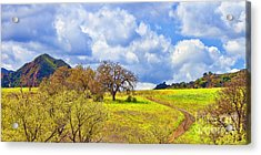 Trail To Nowhere Acrylic Print by Jason Abando