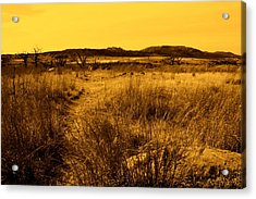 Trail To The Valley II Acrylic Print by Mickey Harkins