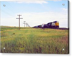 Train And Poles Acrylic Print by Trent Mallett