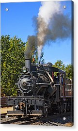 Train Number One Acrylic Print by Garry Gay