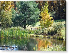 Acrylic Print featuring the photograph Tranquil by John Schneider