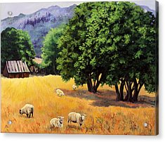 Tranquil Pastures Acrylic Print