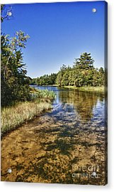 Tranquil Stream In Northern Michigan Acrylic Print by Christopher Purcell
