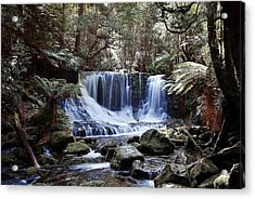 Tranquillity 01 Acrylic Print by David Barringhaus
