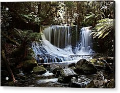 Tranquillity 05 Acrylic Print by David Barringhaus