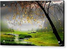 Tranquillity Acrylic Print by Igor Zenin