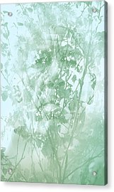 Transient Acrylic Print by Richard Piper