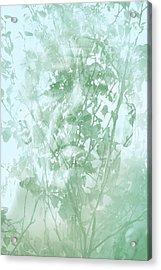 Transient Acrylic Print