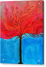 Transition To Spring Acrylic Print by Prachi  Shah