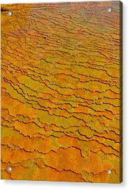 Travertine Jigsaw Acrylic Print
