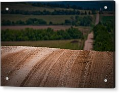 Acrylic Print featuring the photograph Tread On Me by Brian Duram