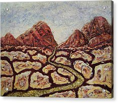 Treasures Of Copper Canyons Acrylic Print by Jan Reid