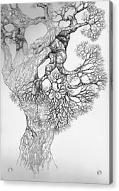 Tree 21 Acrylic Print