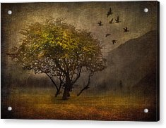 Tree And Birds Acrylic Print by Svetlana Sewell