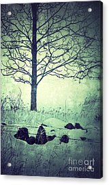 Tree And Fence In The Fog And Snow Acrylic Print by Jill Battaglia