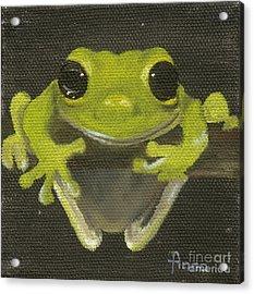 Tree Frog 2 Acrylic Print by Annemeet Hasidi- van der Leij