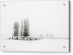 Tree In Snow Acrylic Print by Yagosan