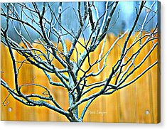 Tree In Winter Acrylic Print by Debbie Sikes