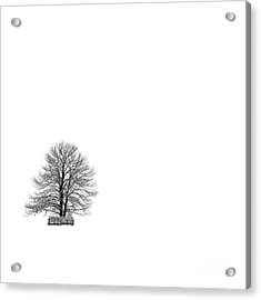 Tree Isolated Under The Snow In The Middle Field In Winter. Acrylic Print by Bernard Jaubert