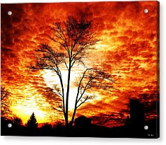 Tree Light Acrylic Print
