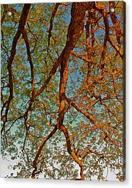Tree Lightning Oil Painting Style Acrylic Print