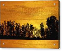 Tree Line On Wood Acrylic Print by Ann Powell